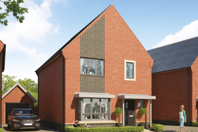 Thumbnail Detached house for sale in Boxted Road, Colchester, Essex