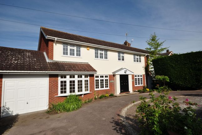 Thumbnail Detached house for sale in Second Avenue, Frinton-On-Sea