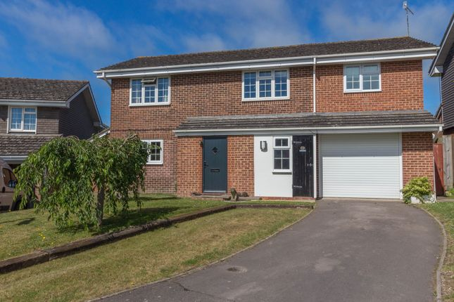 Thumbnail Detached house for sale in Countess Road, Salisbury