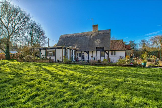 Thumbnail Detached house for sale in High Street, Riseley, Bedford