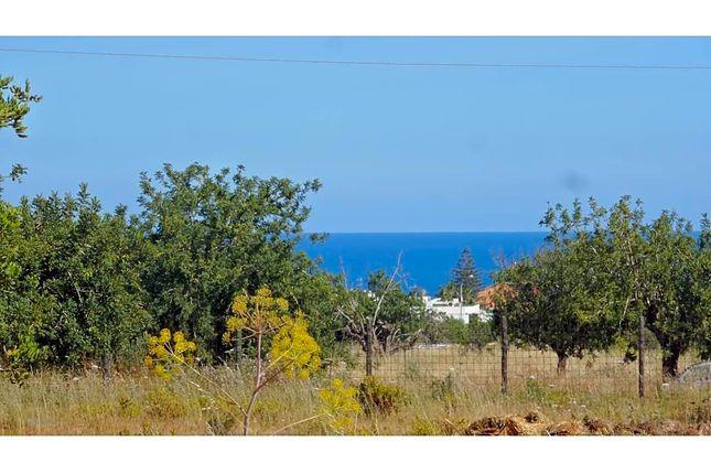 Camí De Cas Mut 07800, Ibiza, Islas Baleares