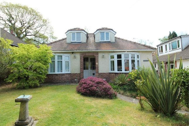 Thumbnail Detached bungalow for sale in Caerphilly Close, Rhiwderin, Newport