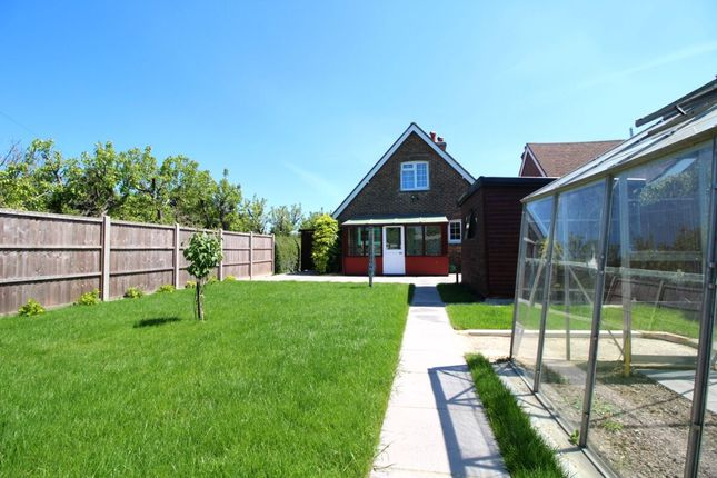 Thumbnail Bungalow to rent in Lidsey Road, Woodgate, Chichester