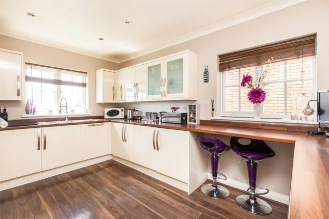 Thumbnail Detached house for sale in Coxheath Close, St. Leonards-On-Sea