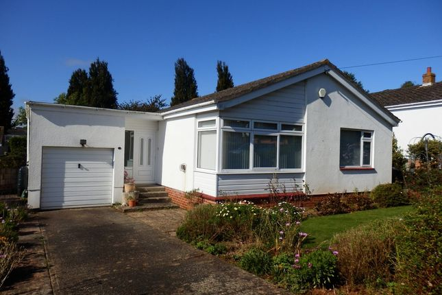Thumbnail Detached bungalow to rent in Peasland Road, Torquay