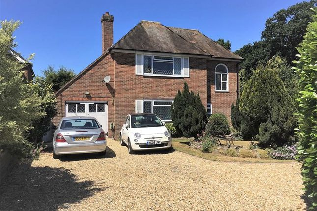 Thumbnail Detached house for sale in South Farm Road, Offington, Worthing, West Sussex