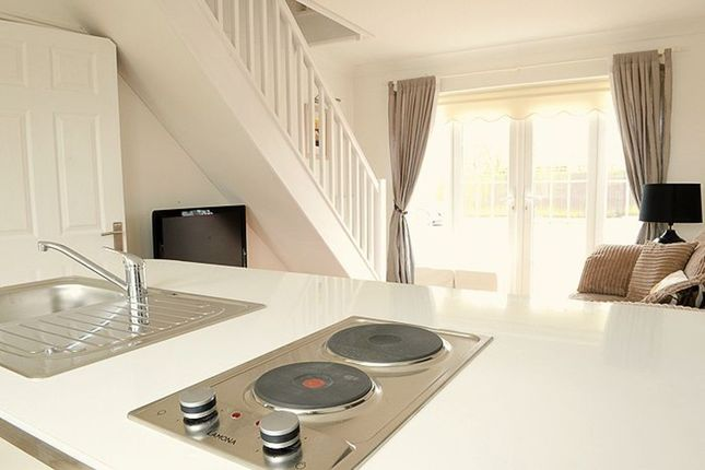 Thumbnail Terraced house to rent in South Road, Beccles