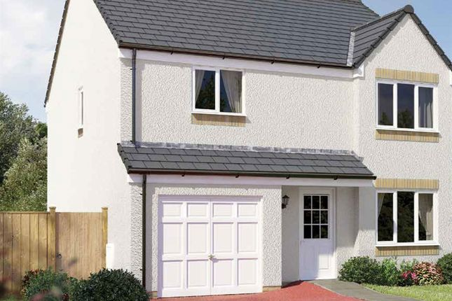 """Thumbnail Detached house for sale in """"The Balerno"""" at Hamilton Road, Larbert"""