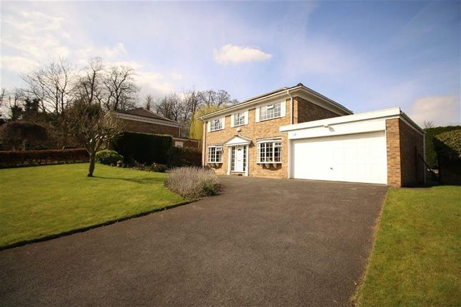 Thumbnail Detached house for sale in Upsall Drive, Darlington, Co. Durham