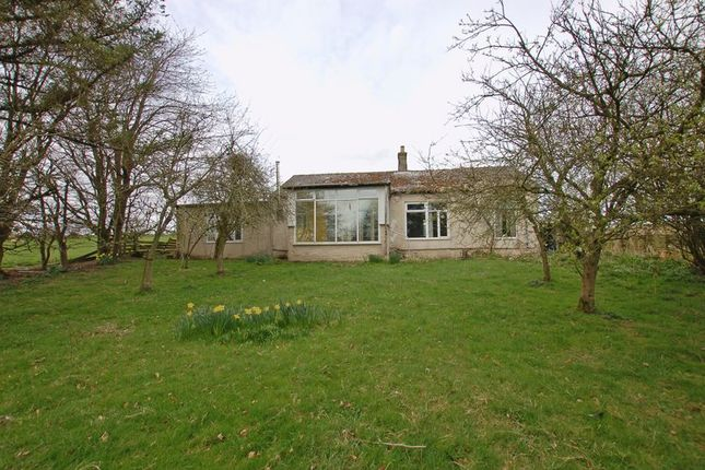 Thumbnail Detached house for sale in Elsdon, Newcastle Upon Tyne