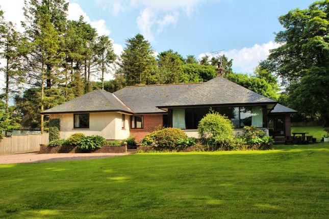 Thumbnail Detached bungalow for sale in Crocketford, Dumfries