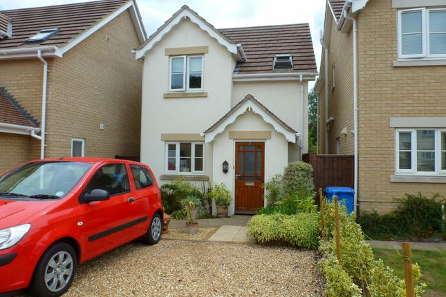 Thumbnail Detached house to rent in Centurion Close, Off Hamilton Road, Poole