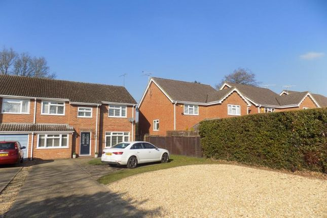 Thumbnail Semi-detached house to rent in Green School Lane, Farnborough, Hampshire