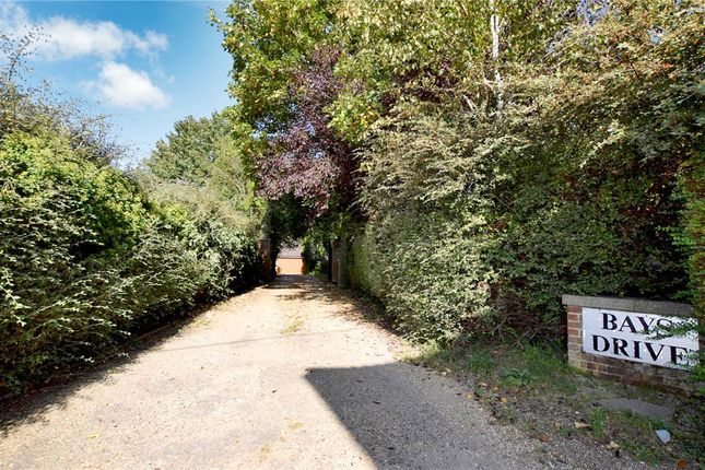 Thumbnail Detached house for sale in Bays Drive, Halstead, Essex