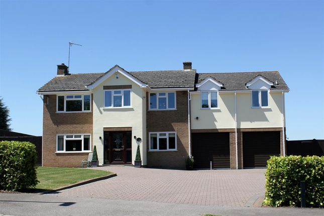 Thumbnail Detached house for sale in Thackers Close, Wansford, Peterborough