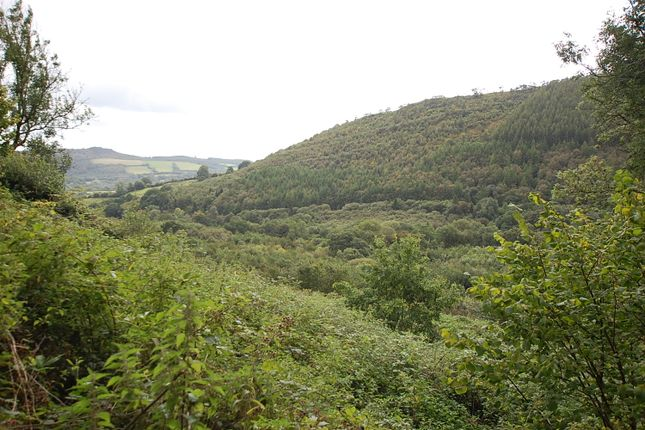Thumbnail Land for sale in Talley, Llandeilo