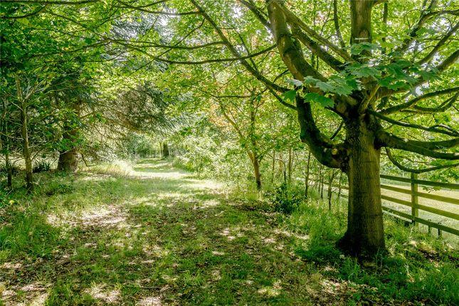 Picture No. 19 of Grove Hill, Dedham, Colchester CO7