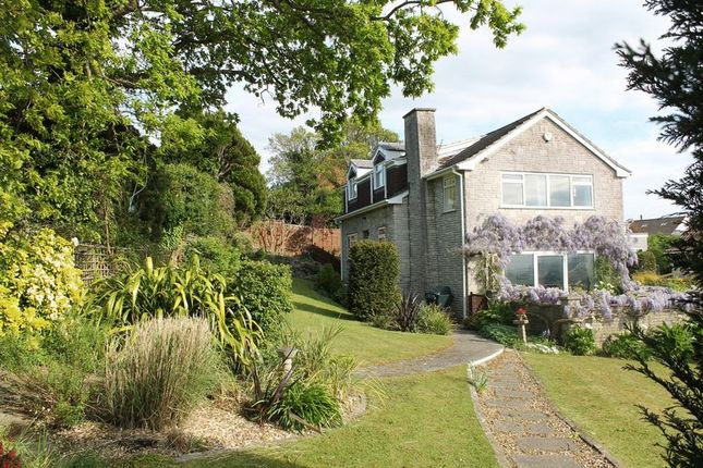 Thumbnail Detached house for sale in Hexton Road, Glastonbury