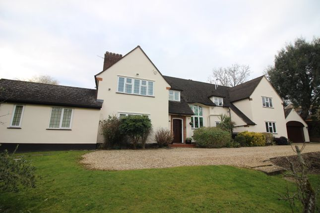 Thumbnail Detached house for sale in Beech Hill Avenue, Barnet