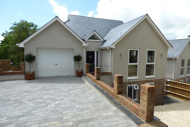 Thumbnail Detached house for sale in Wealden Way, Little Common, Bexhill On Sea