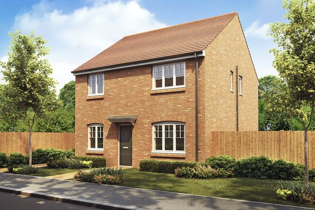 """Thumbnail Detached house for sale in """"The Knightsbridge"""" at Appleford Road, Sutton Courtenay, Abingdon"""