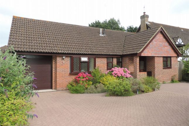 Thumbnail Detached bungalow for sale in Magpie Close, Bexhill On Sea, East Sussex