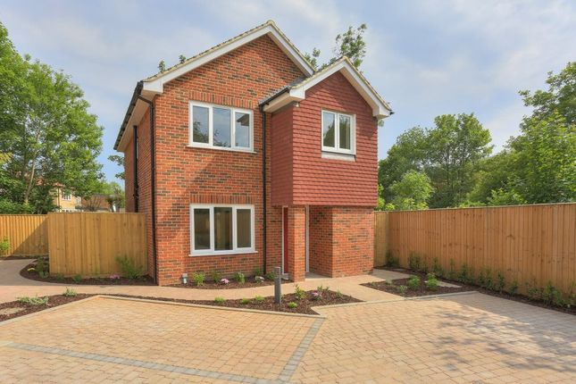 Thumbnail Property to rent in Holly Close, St Albans, Herts