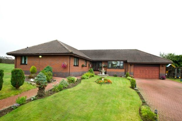 Thumbnail Detached house to rent in Wishaw