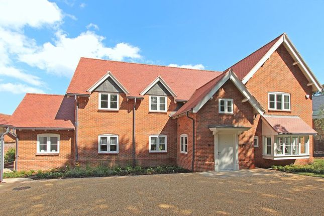 Thumbnail Country house to rent in Forest Park Road, Brockenhurst
