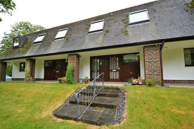 Thumbnail Studio for sale in Chestnut Court, Leyland