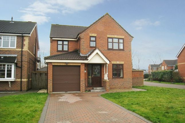 Thumbnail Detached house for sale in Cranberry Way, Hull