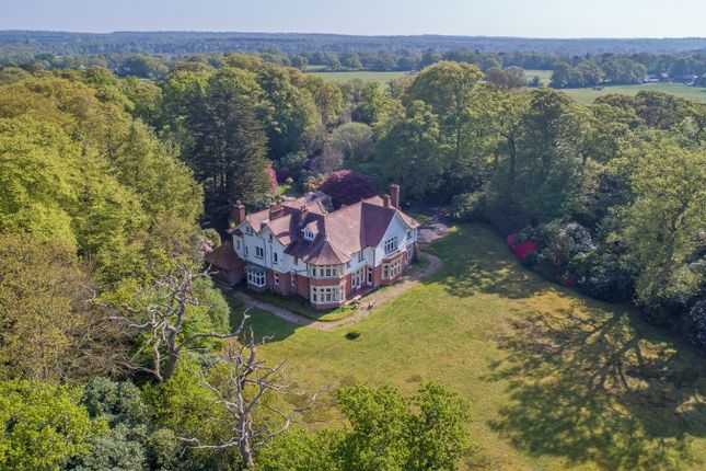 Thumbnail Equestrian property for sale in Aldridge Hill, Brockenhurst