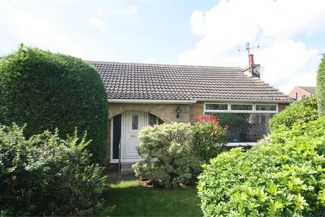 Thumbnail Detached bungalow to rent in Colinwood Avenue, Rise Park, Nottingham