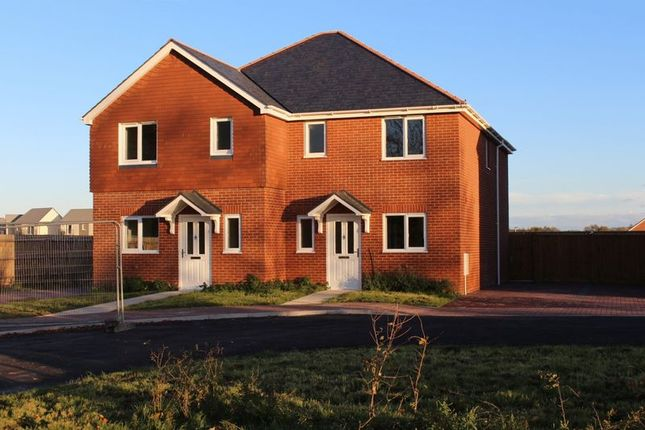 Thumbnail Semi-detached house for sale in Salisbury