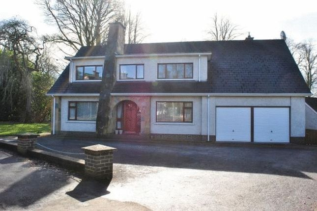 Thumbnail Detached house for sale in Glenagherty Drive, Ballymena
