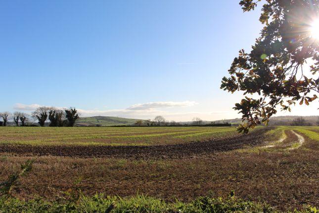 Thumbnail Land for sale in Tinnock Upper, Gorey, Wexford