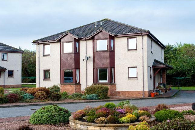 Thumbnail Semi-detached house for sale in Malcolm's Mount West, Stonehaven