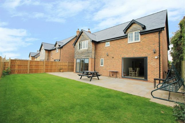 Thumbnail Detached house for sale in Paradise Green, Hereford