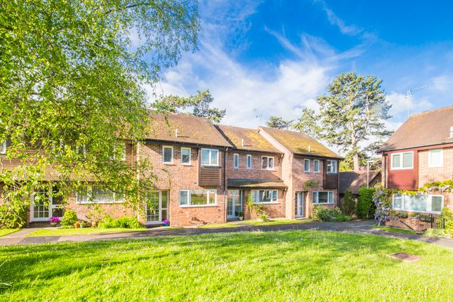 Thumbnail Terraced house to rent in 17 The Birches, Goring On Thames