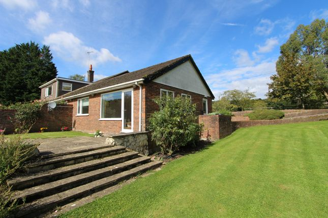 Thumbnail Terraced bungalow to rent in Winchester Road, Stroud, Petersfield
