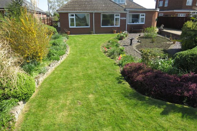 Thumbnail Detached bungalow for sale in Langary Gate, Gedney Hill, Spalding