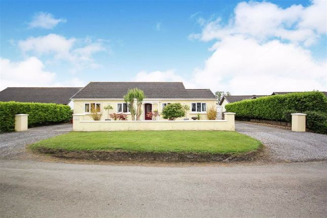 Thumbnail Detached bungalow for sale in Hill Lane, Jeffreyston, Jeffreyston Kilgetty