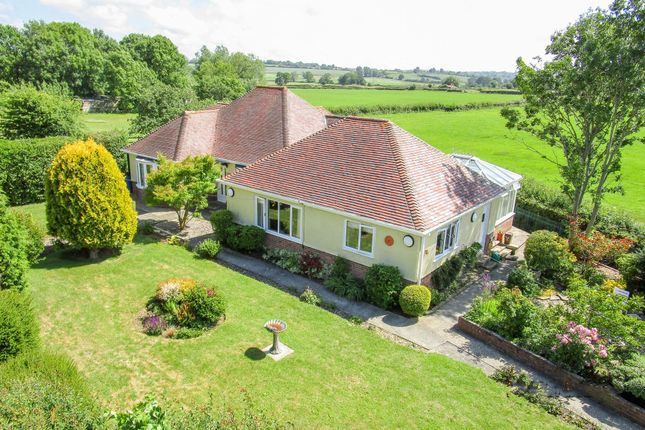 Thumbnail Detached bungalow for sale in Long Acre, Tintinhull, Chilthorne Domer, Somerset