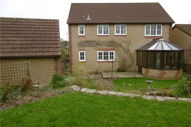 Thumbnail Detached house to rent in Tunnel Road, Beaminster