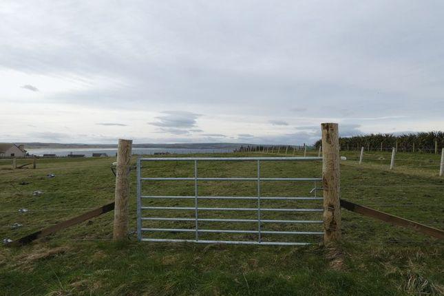 Photo 8 of Plot Of Land, Westside, Dunnet KW14