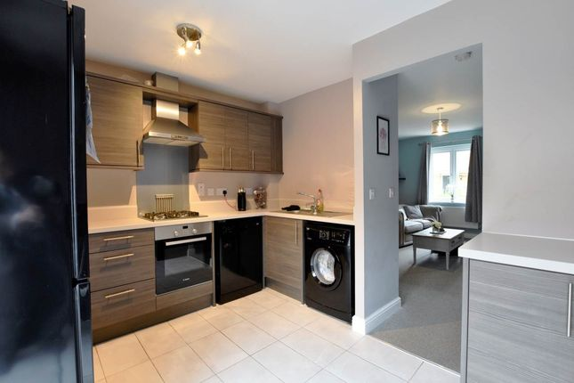 Thumbnail 3 bed terraced house for sale in Bruce Grove, Hempsted, Peterborough