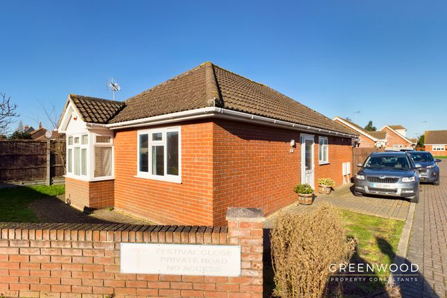 2 bed detached bungalow to rent in Festival Close, Weeley, Clacton-On-Sea CO16