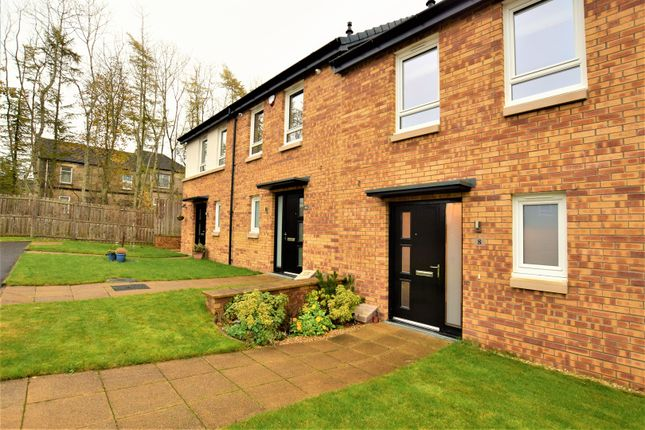 Thumbnail Terraced house for sale in Busby Place, Wishaw