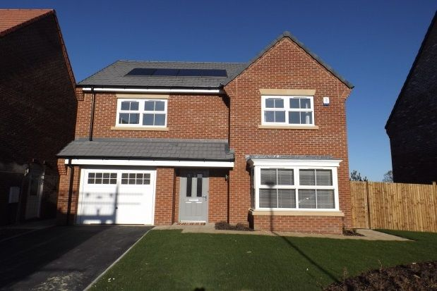 Thumbnail Property to rent in Moorlands Fold, Killinghall, Harrogate