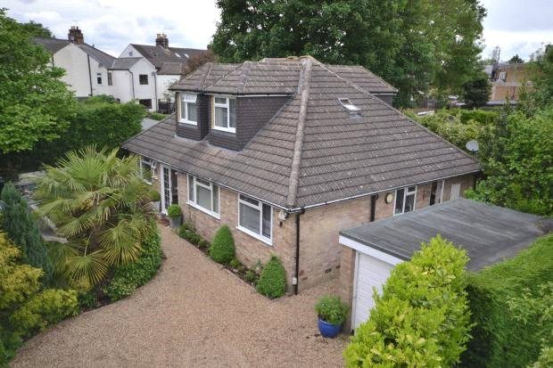 Thumbnail Detached bungalow for sale in Lower Guildford Road, Knaphill, Woking, Surrey